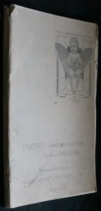 náhled knihy - V. Hynais : výběr jeho prací z let 1891-1901