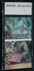 náhled knihy - Mladý akvarista