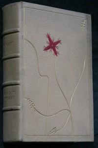 náhled knihy - Kamarádi svobody : román