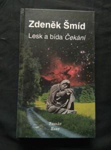 náhled knihy - Lesk a bída Čekání (pv, 204 s.)