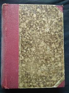 náhled knihy - Do vyhnanství - hist. obraz z doby utrpení (Oppl, 464 s.)