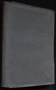 náhled knihy - Hora Venušina : román