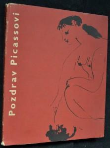 náhled knihy - Pozdrav Picassovi