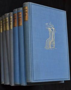 náhled knihy - Okouzlená duše. I - VII
