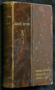 náhled knihy - Román o věrném přátelství Amise a Amila
