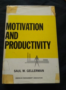 náhled knihy - Motivation and Productivity (A4, 394 s.)