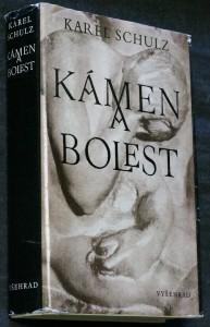 náhled knihy - Kámen a bolest : [Román o Michelangelovi]