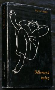 náhled knihy - Odlomená haluz