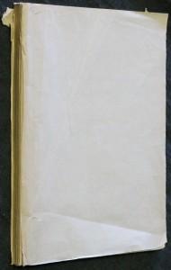 náhled knihy - Ornamentika : nástin vývoje ornamentu ve výtvarném umění