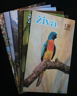 náhled knihy - Živa 1.-6. 1989