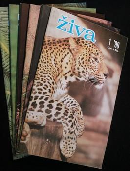 náhled knihy - Živa 1.-6. 1990