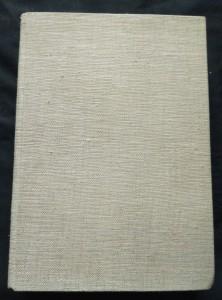 náhled knihy - Nebojácná Ho-Ming (A4, Ocpl, 212 s., il. K. Wiese)