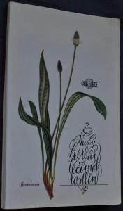 náhled knihy - Malý herbář léčivých rostlin