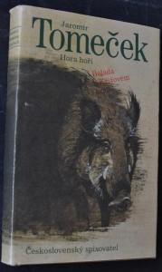 náhled knihy - Hora hoří : balada o Křížovém králi