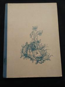 náhled knihy - Muk, ze života sněžného zajíce (il. V. Zingg)