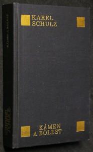 náhled knihy - Kámen a bolest