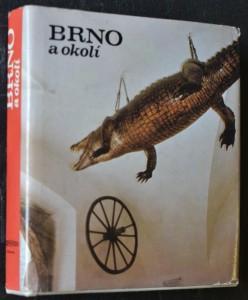 náhled knihy - Brno a okolí : [Fot. publ.]