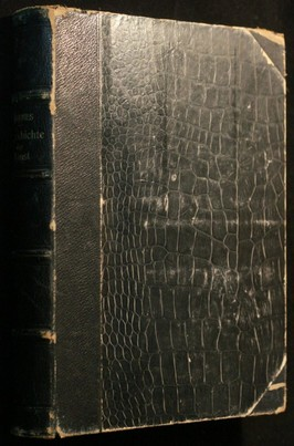 náhled knihy - Urgeschichte der bildenden Kunst in Europa : von den Anfängen bis um 500 vor Christi