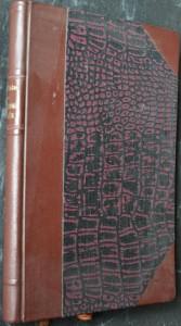 náhled knihy - Moderní člověk : studie ethicko-pastorální