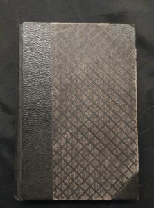 náhled knihy - Dvě povídky - Mezi knihami a lidmi, Sláva (Oppl, 160 s.,), Podivný případ dra. Jekylla a pana Hyda (106 s.)