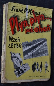 náhled knihy - Plyn, plyn ..., pak oheň
