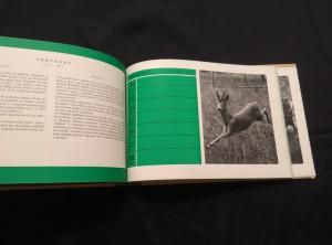 antikvární kniha Myslivosti a lovu zdar! Rok myslivce a rybáře v Československu 1957 (A4, Oppl, nestr., foto K. Hájek, S. Štochl), 1957