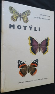 náhled knihy - Motýli