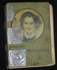 náhled knihy - Sestřička Petra Zemana : Dívčí román