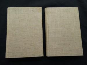 náhled knihy - Bohéma I, II (Cpl, 266 a 212 s.)