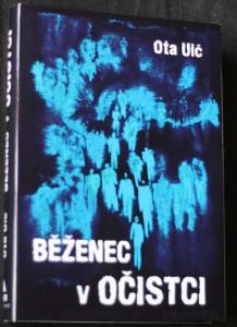 náhled knihy - Běženec v očistci