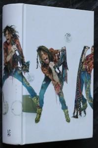 náhled knihy - Vadí vám chaos v mojí hlavě? : rokenrolové paměti frontmana Aerosmith