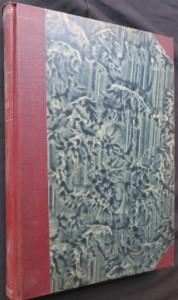 náhled knihy - Anglická literatura doby nejnovější od Dickense až k Shawovi