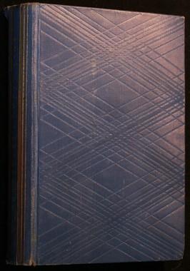 náhled knihy - Dvojí lidé : román