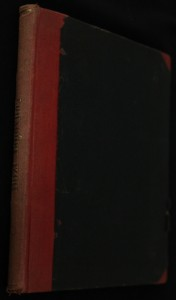 náhled knihy - Boží bojovníci. Vlastenecká historie z XV. století.