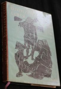 náhled knihy - Bronzová cesta : příběh z dávných dob