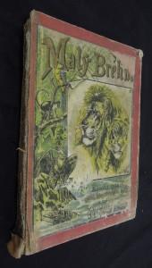 náhled knihy - Malý Brehm, Ssavci