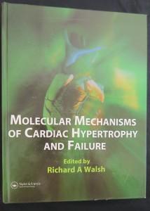 náhled knihy - Molecular Mechanisms of Cardiac Hypertrophy and Failure