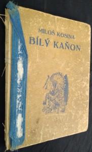 náhled knihy - Bílý kaňon : Příběhy indiánského chlapce