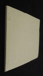 náhled knihy - Výzdoba fasády na domě č. p. 77 v Pardubicích