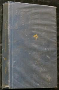 náhled knihy - Zapomenuté údolí : román