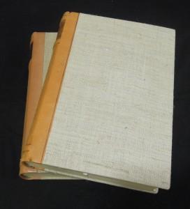 náhled knihy - Výbor z dramat I. a II.