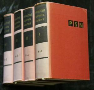 náhled knihy - Příruční slovník naučný