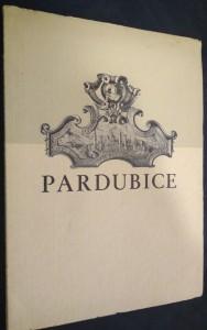 náhled knihy - Pardubice : průvodce