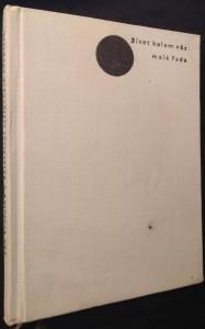 náhled knihy - Třiatřicet stříbrných křepelek