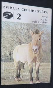 náhled knihy - Zvířata celého světa: Koně, osli a zebry