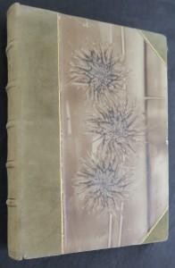 náhled knihy - Kniha z přírody : prósy