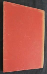 náhled knihy - Anna Livia Plurabella : fragment Díla v zrodu (Work in Progress) (výtisk č. 103)