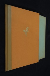 náhled knihy - Mimi Pinson : profil grisetky