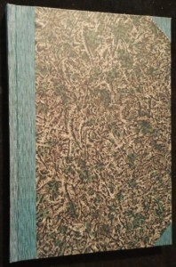 náhled knihy - Tiché vody : román