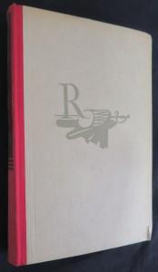 náhled knihy - Osamělý rváč : román lidského hledání, osamělosti a strachu